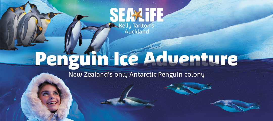 Kelly Tarlton's Sealife